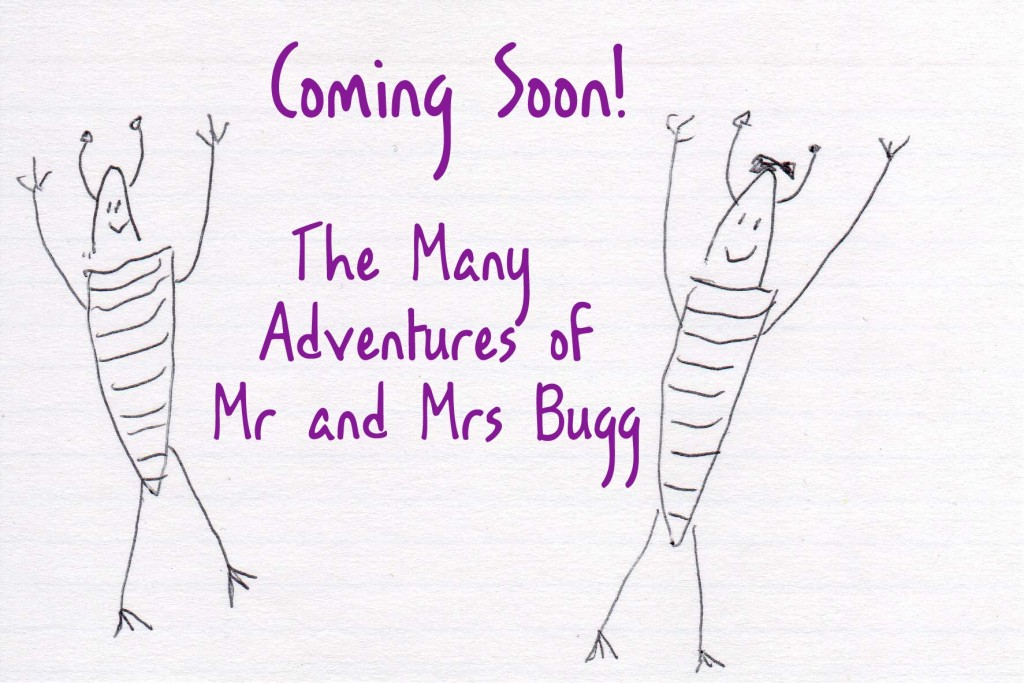 coming soon : the many adventures of Mr and Mrs Bugg