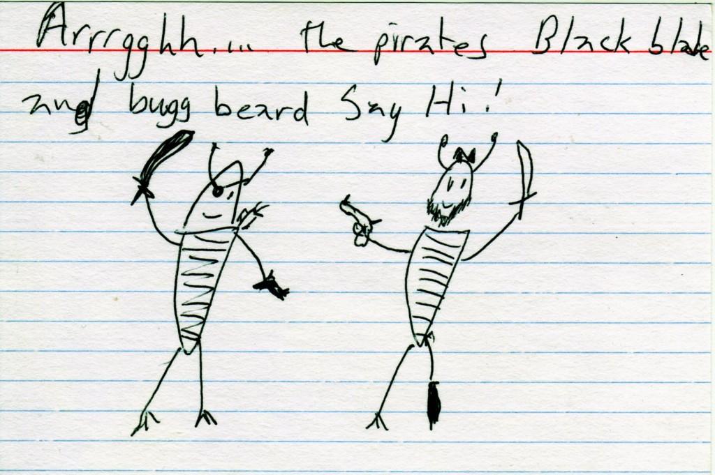 piratey buggs